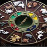 Conoce los 12 signos del zodíaco chino